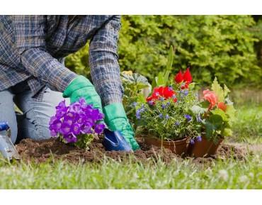 Bahçe temizliği ve düzeni için öneriler!